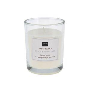 Vonná sviečka FRESH LINE 10 × 8 cm v pohári